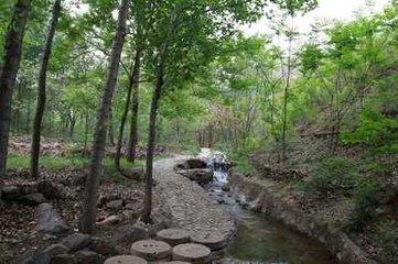 阳曲县采用云巡更系统加强森林资源管护